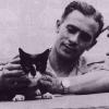 Легендарный кот Саймон