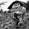Швейцария и детское рабство