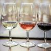 Качество вина — вопрос, в котором путаются даже эксперты
