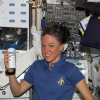 Лиза Новак — единственный в мире астронавт-уголовник и ходячая реклама подгузников NASA